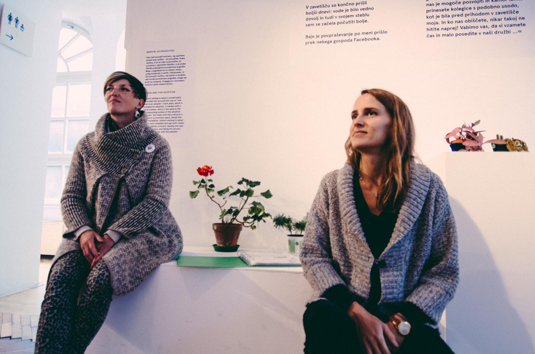 Zavetišče za zavržene rastline: Jesensko zatočišče v MGLC