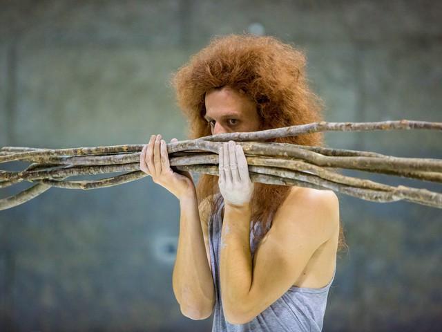 Matija Ferlin: Antigona
