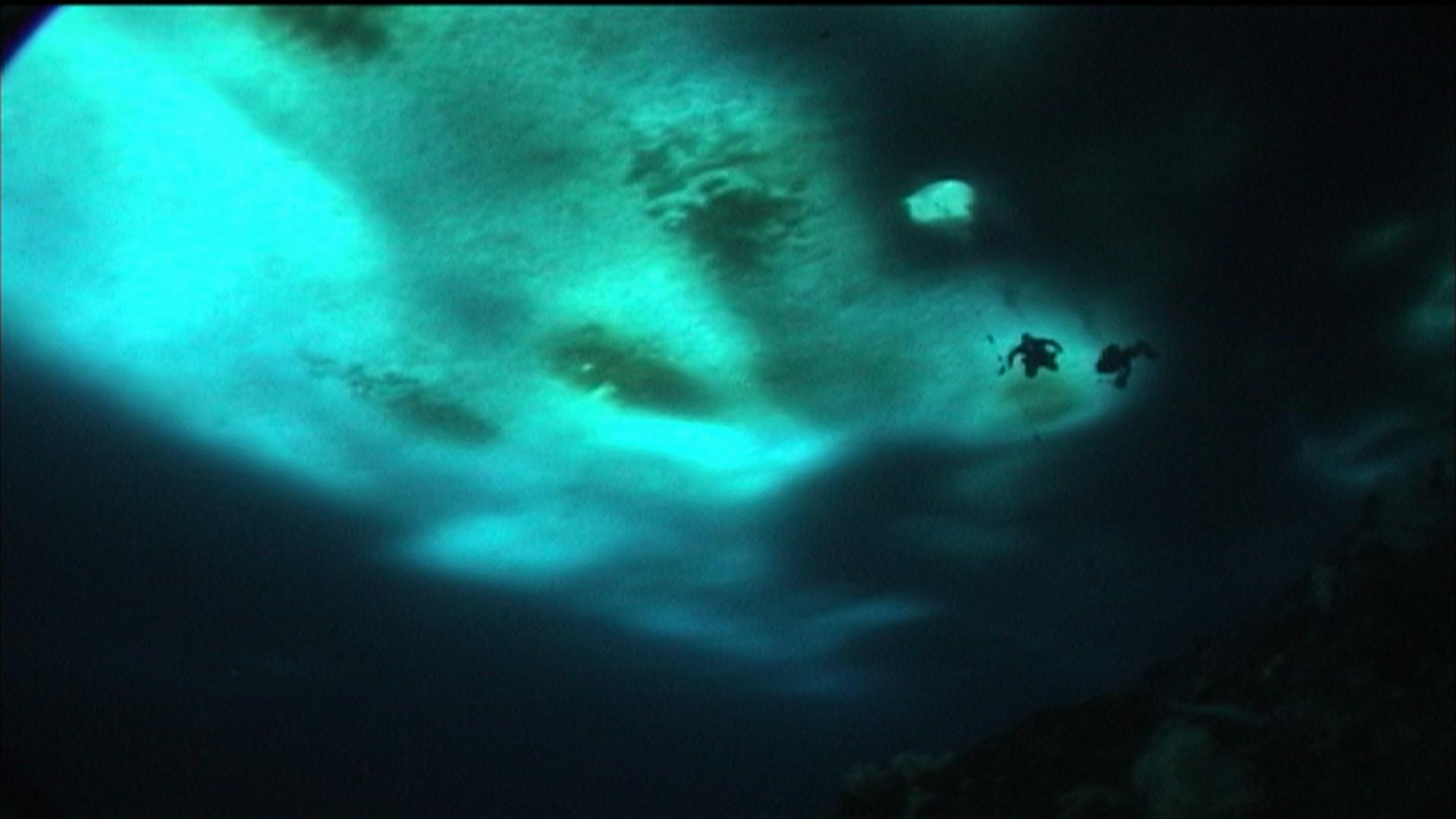 Divje modro onostranstvo (2005)